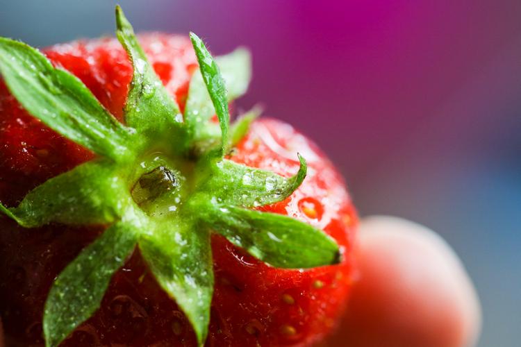 Come conservare la frutta fresca