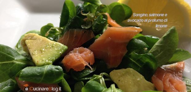 Songino, avocado e salmone al profumo di limone
